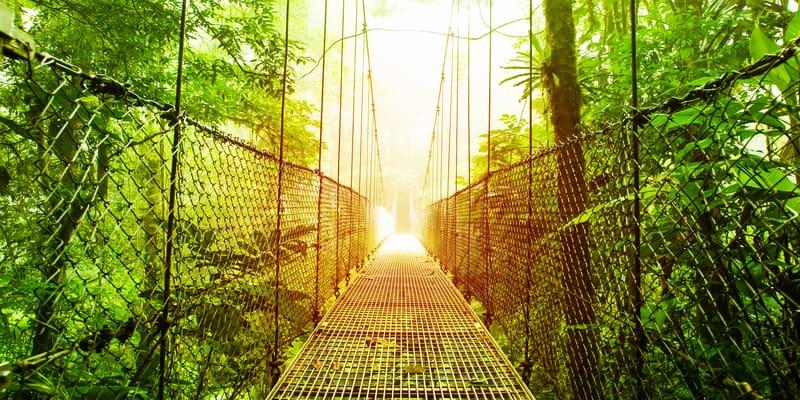 Costa Rica: Parque Tortuguero y playas de Guanacaste