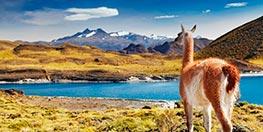 Chile imprescindible: explora Atacama y la Patagonia Chilena