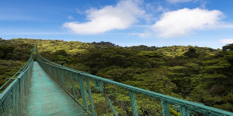 Parque Monteverde puente colgante
